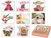 Box 8, pets happy birthday cards*